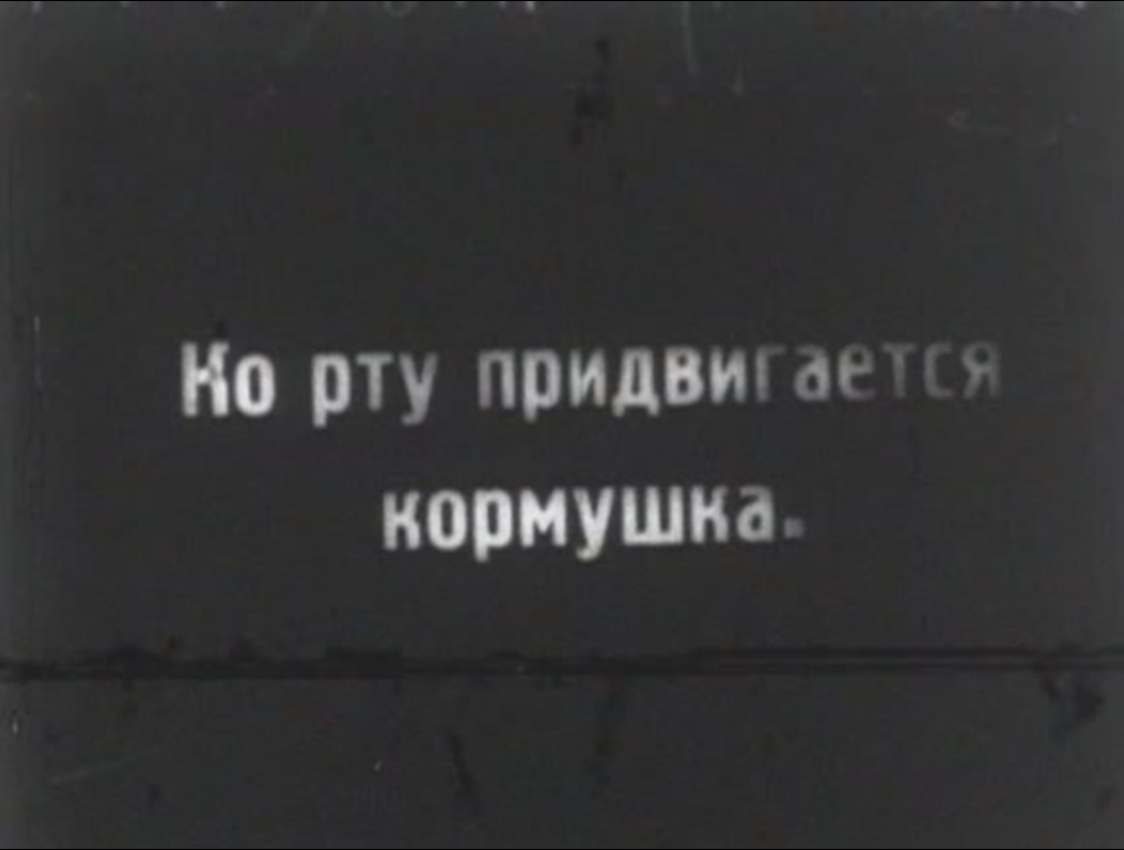 17453681_238943223236221_76553513_o