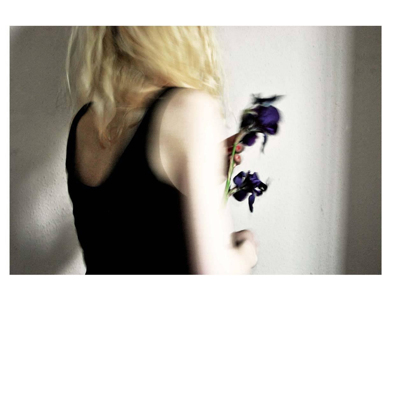 Без назви-квітка