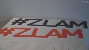 ZLAM: art meets design у D.HUB